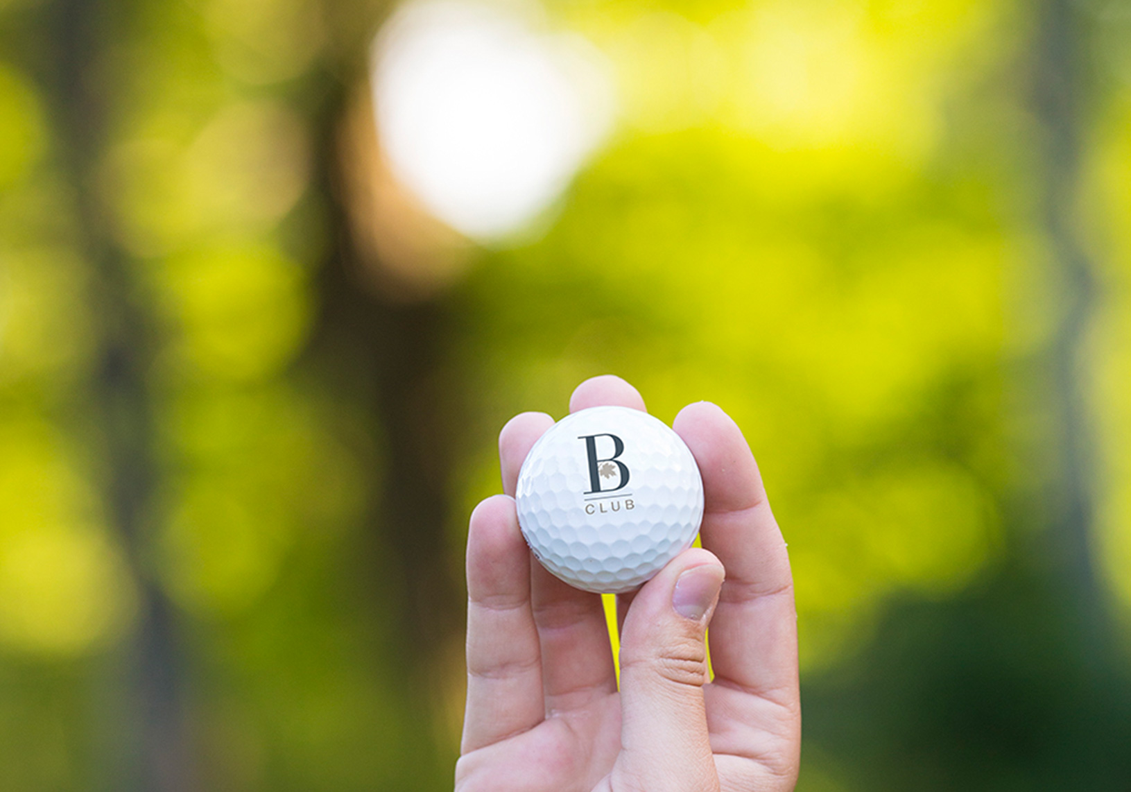 Braestone Golf Ball